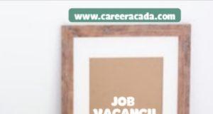 BFree Nigeria Limited Recruitment